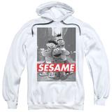 Hoodie: Sesame Street- On The Street Pullover Hoodie