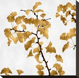 Ginko in Gold I Stretched Canvas Print by Kate Bennett