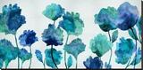 Aqua Blossom Stretched Canvas Print by Vanessa Austin