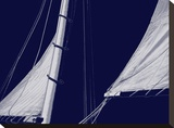Schooner Sails II Stretched Canvas Print by Charlie Carter