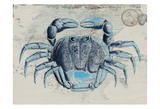 Mysterious Crustacean 2 Posters by Sheldon Lewis