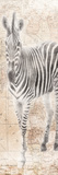 African Traveling Animals Two Print by Jace Grey