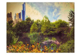 Central Park Painted Prints by Joseph Rowland