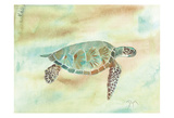 Crystal Tone Sea Turtle Print by Beverly Dyer