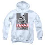 Youth Hoodie: Sesame Street- On The Street Pullover Hoodie