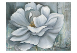 Silken Bloom II Withaar Prints by Rian Withaar