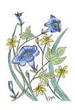 Ivey Leaved Morning Glory Prints by Beverly Dyer