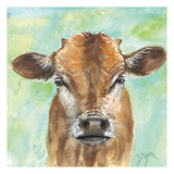 Little Bull Prints by Beverly Dyer