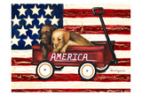 America Friends Prints by Laurie Korsgaden