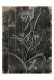 Wood Floral Prints by Jace Grey