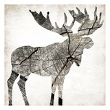 Wood Moose Posters by Jace Grey