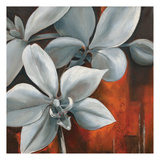 Pearl Orchid II Print by Rian Withaar