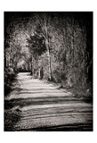 Country Lane Prints by Sandro De Carvalho