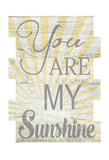 You Are My Sunshine 2 Posters by Jane Fox
