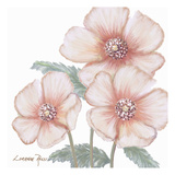 Pink Poppies 1 Posters by Lorraine Rossi