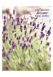 Lavender 2 Quote Posters by Tracey Telik
