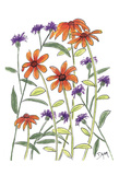 Orange Corn Flower Prints by Beverly Dyer