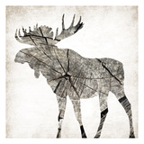 Wood Moose Mate Prints by Jace Grey