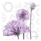 Poppy Arch 1 Art by Lorraine Rossi