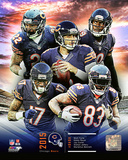 Chicago Bears 2015 Team Composite Photo