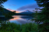 Tree Framed Trillium Lake Reflection, Summer Mount Hood Oregon Photographic Print by Vincent James