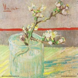 Van Gogh- Blossoming Almond Branch In A Glass Posters by Vincent Van Goh