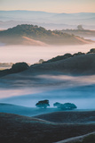 Ethereal Morning World, Misty Foggy Light, Petaluma California Photographic Print by Vincent James