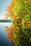Fall Color Reflections ay Holderness New Hampshire, New England Photographic Print by Vincent James