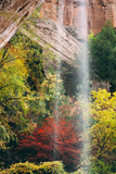 Autumn in Zion Canyon, Southwest, Utah, National Parks Photographic Print by Vincent James