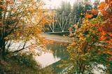 Autumn Bridge, Coulmbiua River Gorge, Portland, Oregon Photographic Print by Vincent James