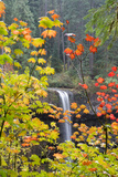 South Falls in Autumn Detail, Silver Falls State Park, Silverton, Oregon Photographic Print by Vincent James