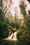 Within Beautiful Cataract Falls, Marin County Hiking California Photographic Print by Vincent James