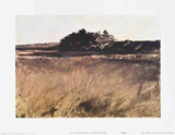 Salt Marshes Collectable Print by Andrew Wyeth