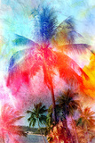 Beautiful Watercolor Palm Trees Poster by  tanor27