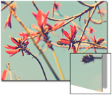 Flowers in Bloom on a Tree Posters par Myan Soffia