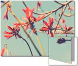 Flowers in Bloom on a Tree Poster van Myan Soffia