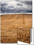 Rural Country Scene in the North of England UK Posters av Mark Sunderland