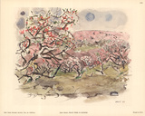Peach Trees in Blossom Poster by John Marin