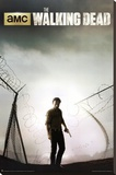 The Walking Dead Season 4 Key Art Stretched Canvas Print