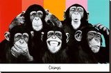 The Chimp Compilation Pop Art Print Poster Trykk på strukket lerret