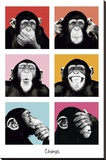 The Chimp-Pop Stretched Canvas Print