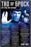 Star Trek- Tao Of Spock Opspændt lærredstryk