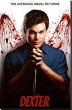 Dexter - Angel Stretched Canvas Print