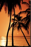 Tropical - Sunset Stretched Canvas Print
