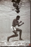Ali - Underwater Stretched Canvas Print