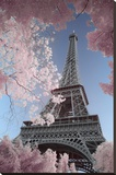 Eiffel Tower- Through Spring Trees Stretched Canvas Print