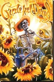 Grateful Dead Grower Stretched Canvas Print