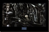 Anima Mia Stretched Canvas Print by H. R. Giger