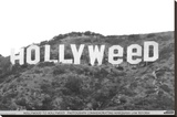 Hollyweed Stretched Canvas Print