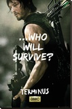 Walking Dead - Daryl Survive Stretched Canvas Print